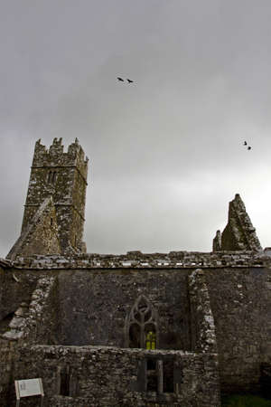 Overcast landscape of Ross Friary, Ireland  Stock Photo - 13687597