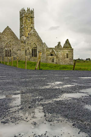 Overcast landscape of Ross Friary, Ireland. Stock Photo - 13660347