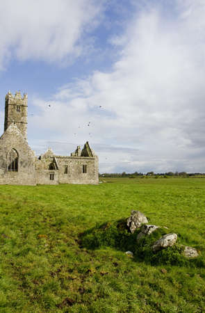 Overcast landscape of Ross Friary, Ireland. Stock Photo - 13660341