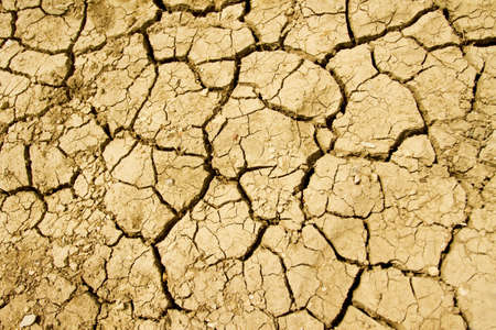 barrenness: Dry ground
