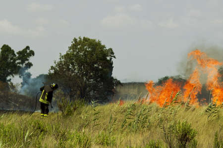 burning bush: Firefighter extinguishes the fire in the fields
