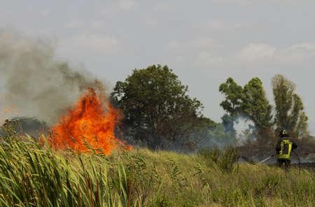 burning bush: Burn fields in Tuscany