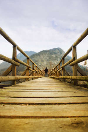 bridge in the forest: wooden bridge