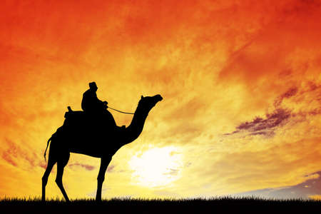 berber: man on camel at sunset