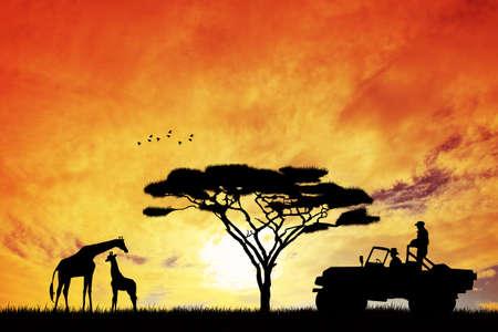 Jeep safari at sunset photo