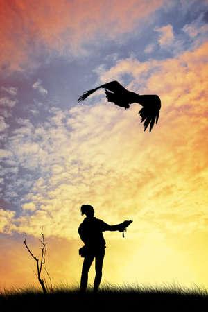 Eagle at sunset photo