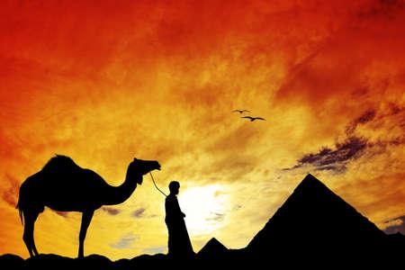 cairo: Cairo and sahara