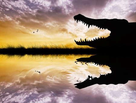 nile river: Alligator at sunset