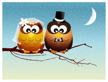 marriage night: Owls in love Stock Photo
