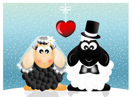 barn black and white: Sheeps in love