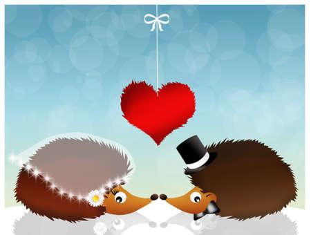 prickles: hedgehogs in love