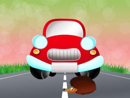 prickles: Hedgehog on the road