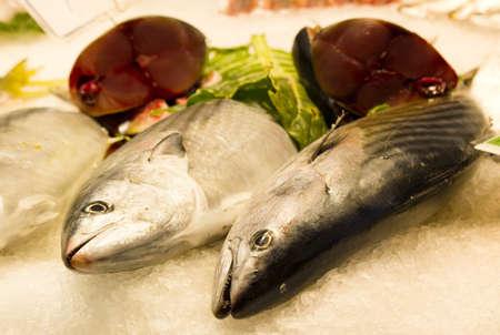 boqueria: fresh fish in the Boqueria market, Barcelona Stock Photo