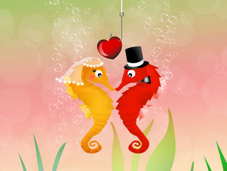 seahorses in love in the aquarium photo
