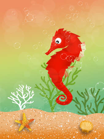 seahorse in the ocean photo