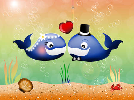 pair of whales in love photo