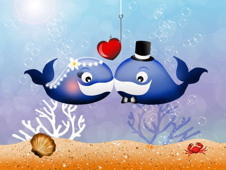 women s hat: whales in love Stock Photo