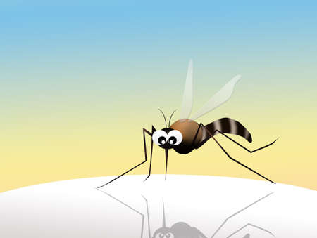 no mosquito: illustration of mosquito