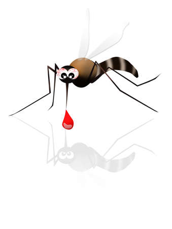 bothersome: mosquito Stock Photo