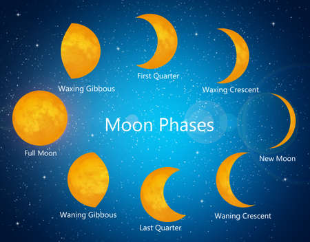 moon phases: illustration of moon phases