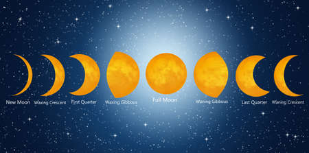 phases: Moon phases