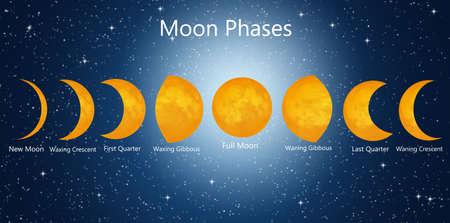 luna: Moon phases