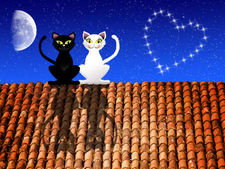Cats in love on the roof photo