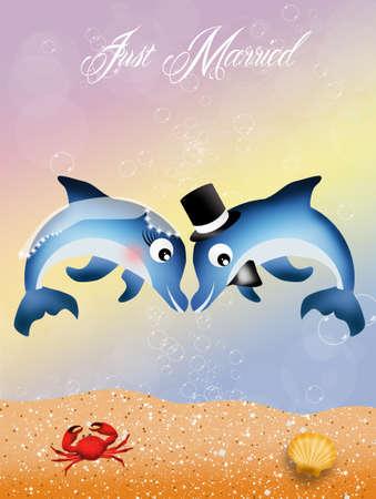 Wedding of dolphins photo