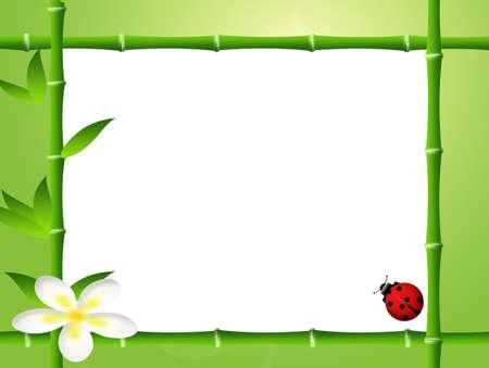 heathcare: frame bamboo and ladybug