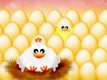 Mother hen photo