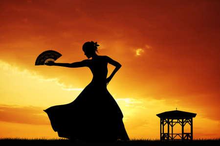 Flamenco silhouette at sunset photo