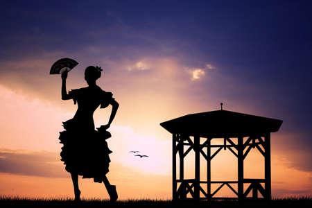 Flamenco at sunset photo