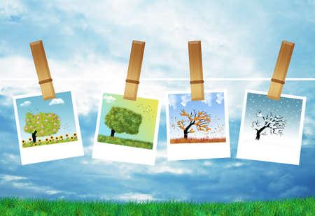 Four seasons Stock Photo - 21730618