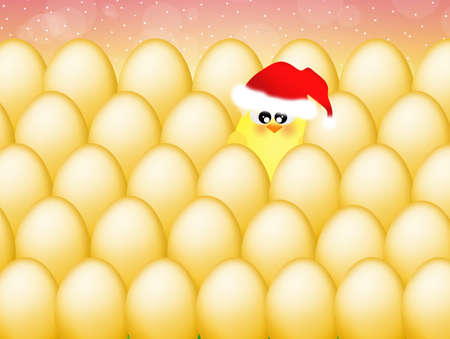 Chick between eggs at Christmas photo