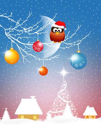 Owl at Christmas photo