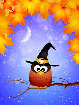 Owl of Halloween photo