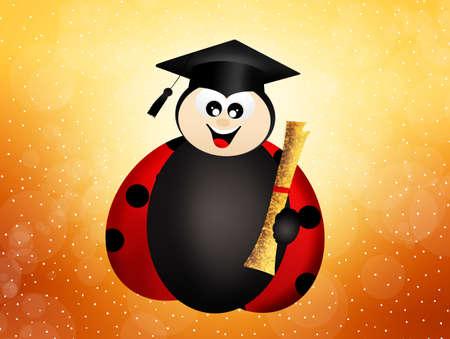 graduate ladybug photo