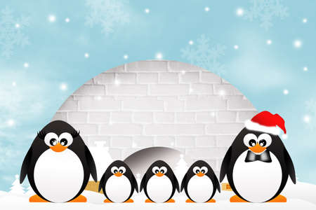 Penguins in the igloo photo