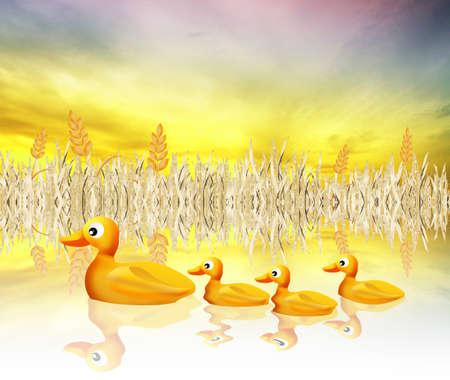 family of ducks photo