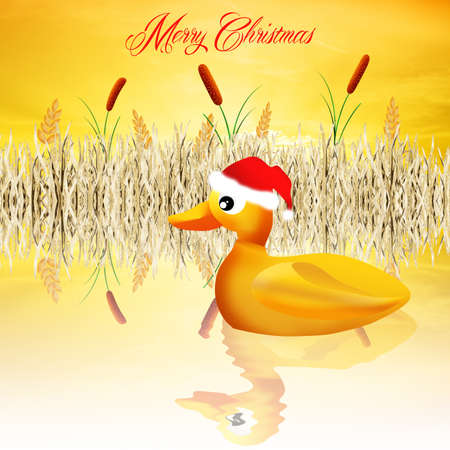 Duck at Christmas photo