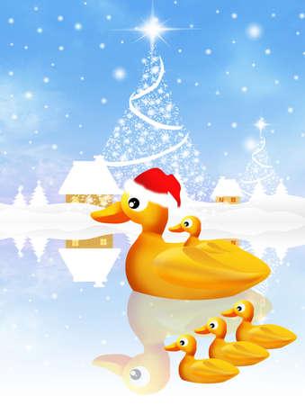 family of ducks at Christmas Stock Photo