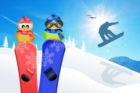 Birds with snowboard photo