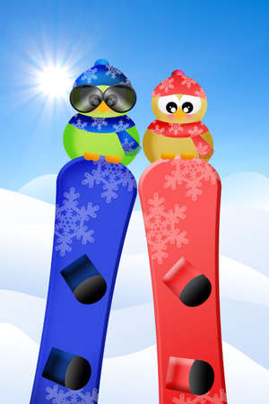 Birds with snowboard photo