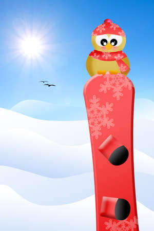 Bird with snowboard photo