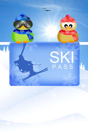 ski pass: illustration of skipass