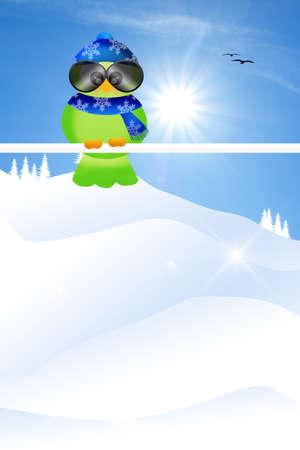 Bird in winter photo
