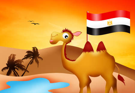 camel with flag Egypt photo