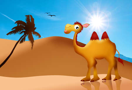 funny camel in the desert photo