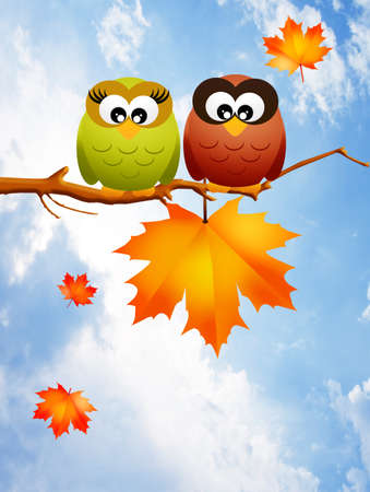 Owls in autumn photo