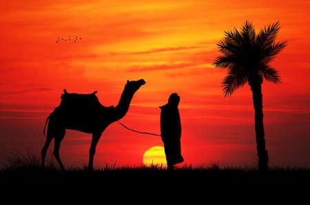 bedouin: Bedouin in the desert